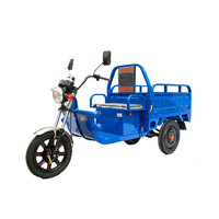 48v 650w brushless battery power electric cargo tricycle