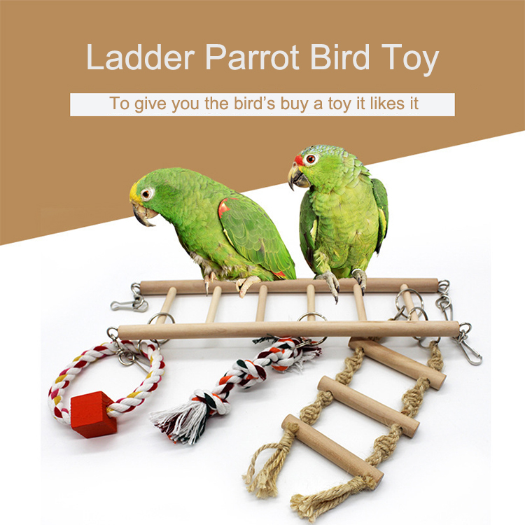 A New Type Of Solid Wood Non-Toxic Quality Cotton Rope Swings Bird Parrot Climbing Ladder/Bird Toy