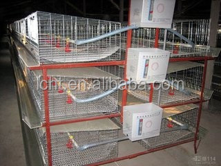 broiler/stacked broiler breeding equipment/Artificial chicken /Automatic chicken/ladder type broiler/autofeeding drinking system