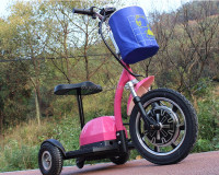 DG-301 350w/500w lithium battery tricycle for handicap with front suspension