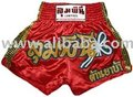 Muay Thai Shorts (Red-Gold)