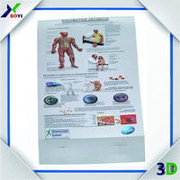 Custom Print Educational 3D Anatomical Chart/Pop Up Plastic 3D Medcial Poster/Gift for Docators