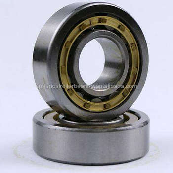Single-row cylindrical roller bearing N1006