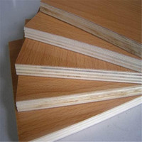 Construction &real estate /timber HPL plywood with cheap poplar core
