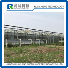 Commercial Venlo Multi span Arched Glass Greenhouse for sale