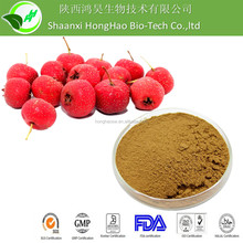 Spray Dried Organic Hawthorn Berry P.E with top quality competitive price
