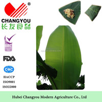 high quality Fresh Banana Leaves for sale
