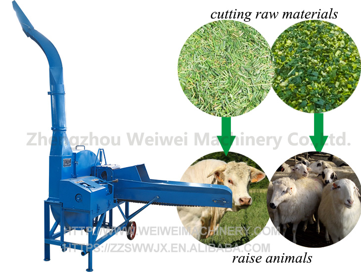 Weiwei capacity 6tph ensilage feed making forage alfalfa hay cutter grass chopper machine for animal