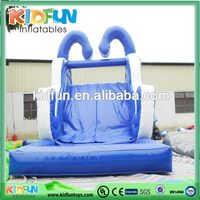 Best price inflatable jumping water slide