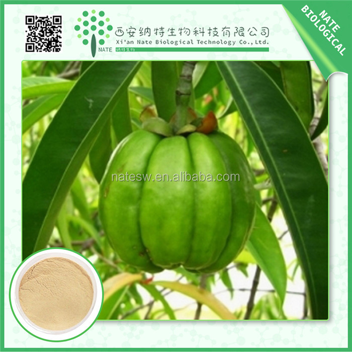 Gold Supplier China herbal extract/organic garcinia cambogia 60% extract hca