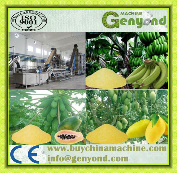 Dried Fruit Powder Processing Line Machine /Fruit Powder Production Line for Apple/Orange/ Melon Mango