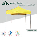 Folding Canopy tent camping popup tent canopies for exhibition