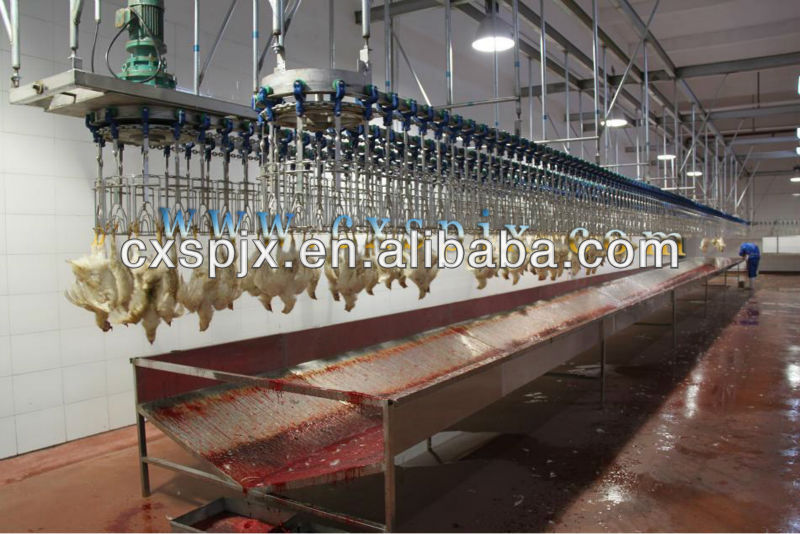 High quality halal slaughter line/ chicken bloodletting machine from china