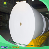 Professional Office Wood Free Copy Paper