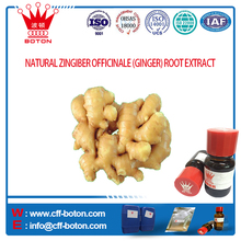 NATURAL ZINGIBER OFFICINALE GINGER EXTRACT