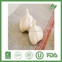 Best seller white fresh garlic for sale