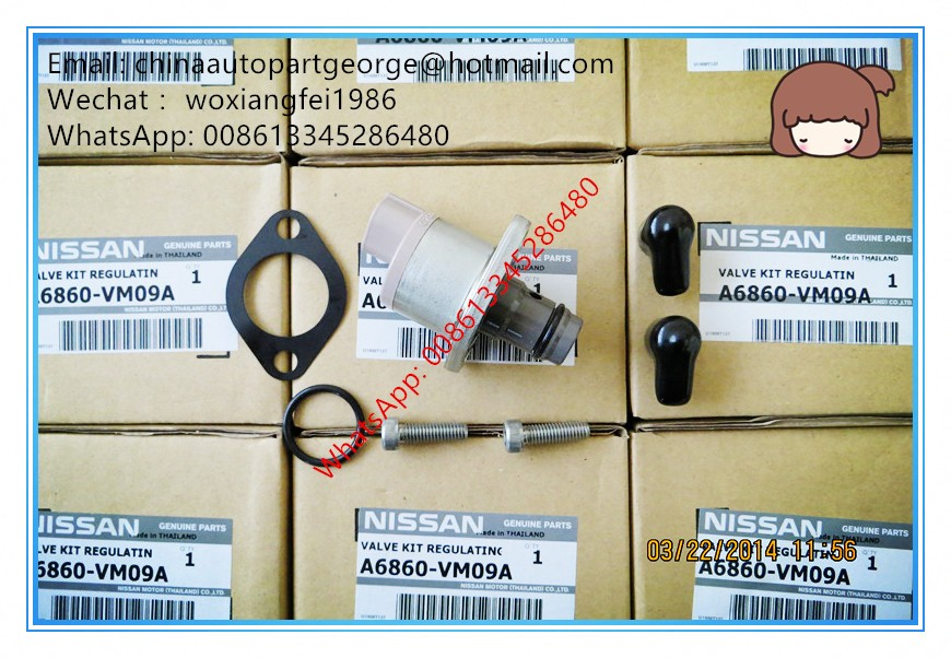 GENUINE AND BRAND NEW SCV OVERHAUL KIT 294200-0360, 294009-0251 for N/ISSAN A6860-VM09A, A6860-EC09A