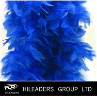 Party Decoration Chandelle Feather Boa SAR434