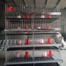 Trade Assurance A Type and H type Baby Chick Cage