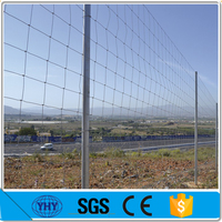 High tensile steel galvanzied Sheep wire fence/grassland fence with barbed wire