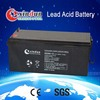 Top Quality Warranty valve regulated lead acid battery for home power system 80/10HR