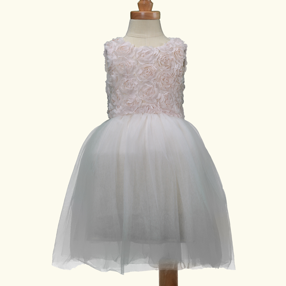 Back to School New Cute Rose Round Neck Organza Snow White Color Costume Tulle Party Dress