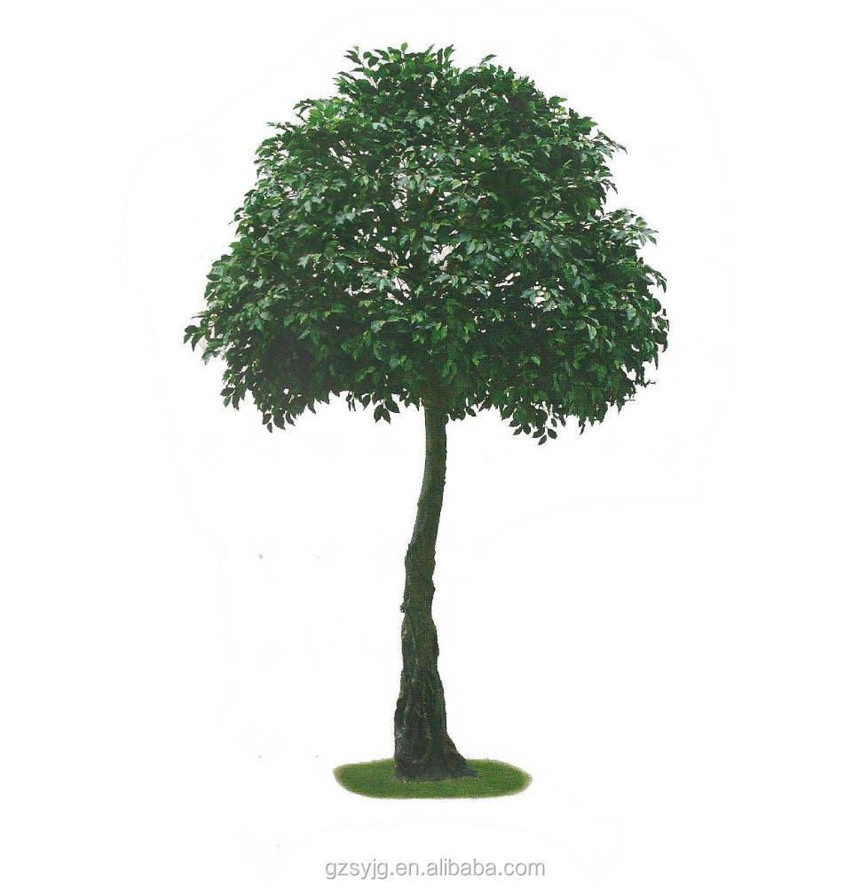 indoor home decorative artificial ficus microcarpa bonsai trees, small artificial banyan tree,