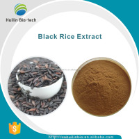 Black Rice Extract Powder