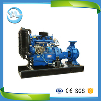 back pull out end suction ballast water pump with diesel engine