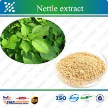 ISO factory supply 100% pure Nettle Extract 80%~95% Beta Sitosterol