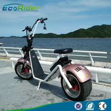 EcoRider Newest Electric Scooter, 1200w Electric Scooters, Cheap Price Chinese Electric Vehicle