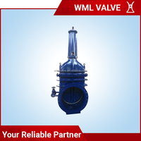 Rising Stem Wedge Single Disc Gate Valve Z541T