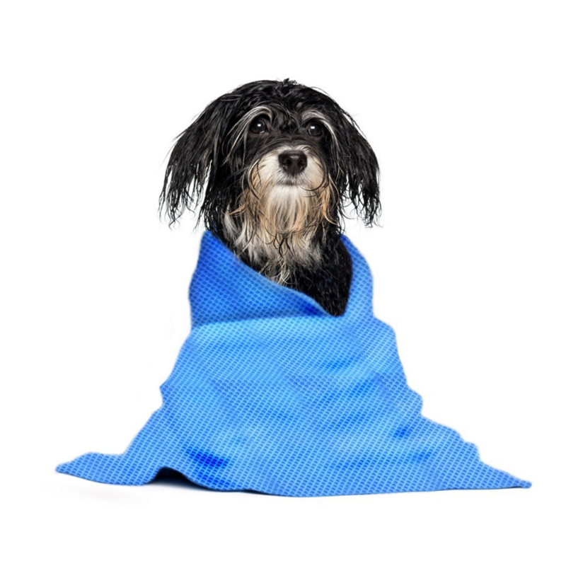China factory price SGS Certification pva pet towel for dog cat drying after taking a bath