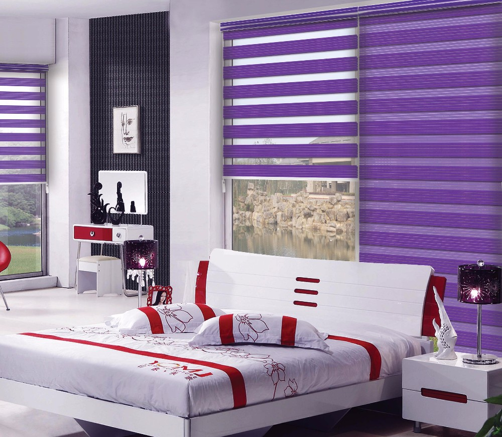 Day Night zebra blinds /Window Zebra Blinds Modern Style Printed Curtain