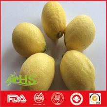 Chinese fresh lemon in bulk sale