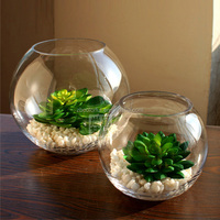 Good quality round ball flower clear glass vase