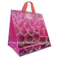 Reusable promotional PP Non Woven Shopping Bags