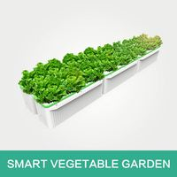 Widely Used Hydroponic System Vertical Greenhouse