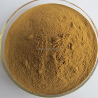 Hot sale Top quality Ginkgo biloba P.E.