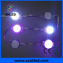 led point light smd5050 1.44w christmas led lights for hotel amusement