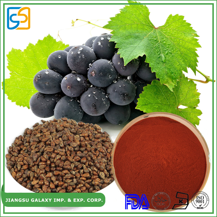 Most popular polyphenol 80% proanthocyanidins 95% grape seed extract opc