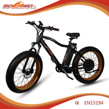 Chinese dirt Electric bike sale for USA