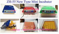 zhenghang brand 55 pcs chicken incubator for sale (lydia chang : 0086-15965977837)