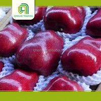 Huaniu apple,fruit fresh, import from china
