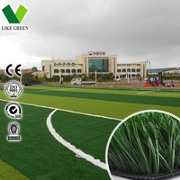 School Soccer Pitch Artificial Plastic Turf