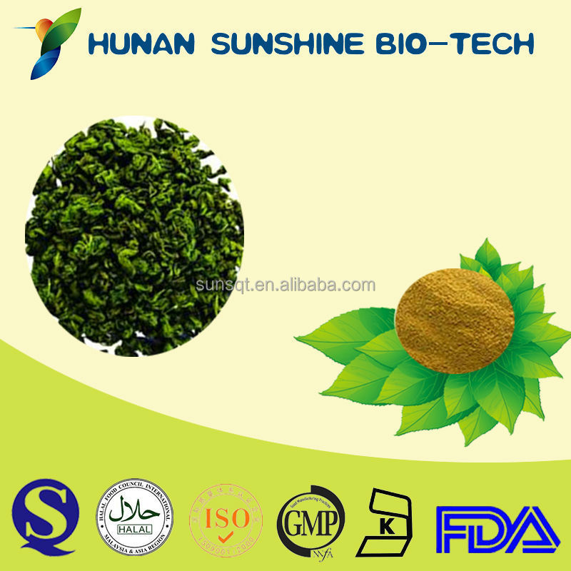 Inspection By HPLC Light yellow powder Sweet tea leaf Extract