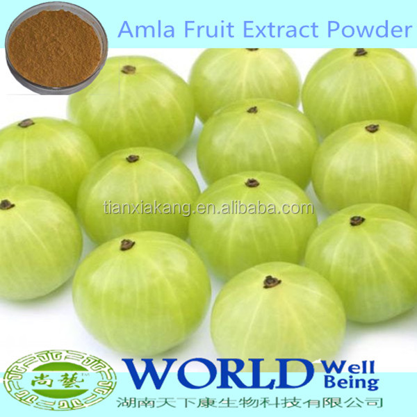 Hot Selling 100% Natural Amla Fruit Extract/Phyllanthus Emblica Extract Powder/Amla Extract