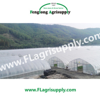 Single Span Agricultural Greenhouse For Vegetable