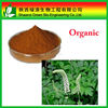 Hot Selling Organic Black Cohosh Root Extract Triterpenoid Saponins 2.5%