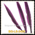 Purple Pheasant Tail Feather